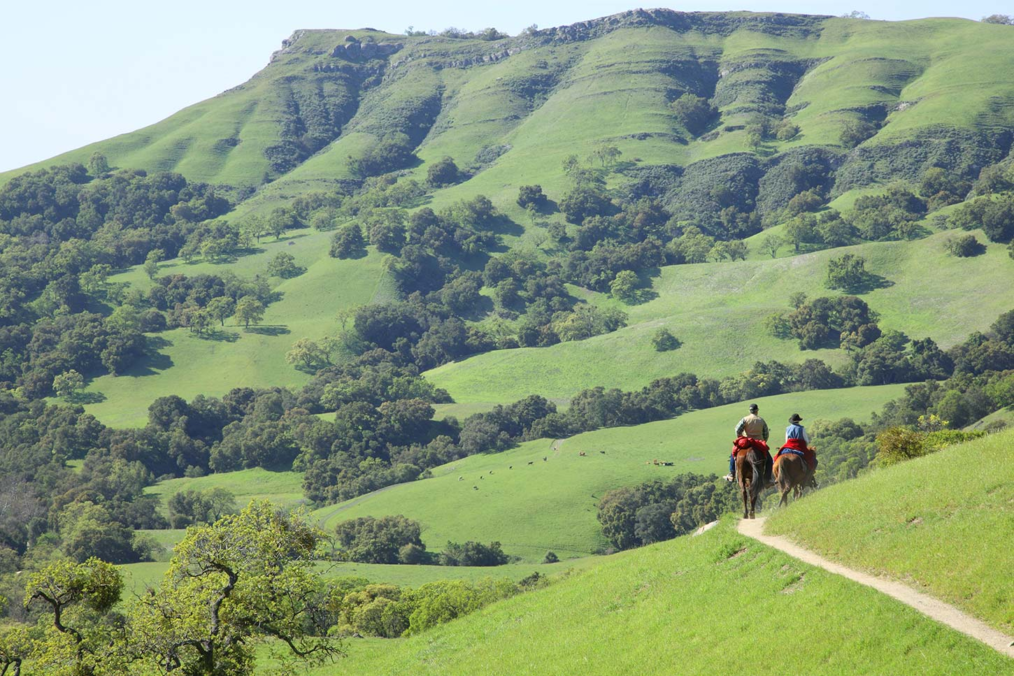 Canyon View Trail, Sunol Regional Wilderness