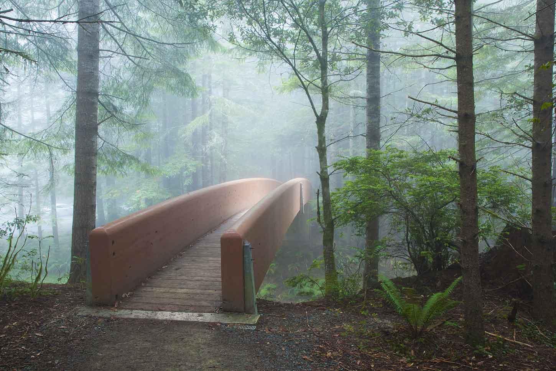 The Lady Bird Johnson Trail