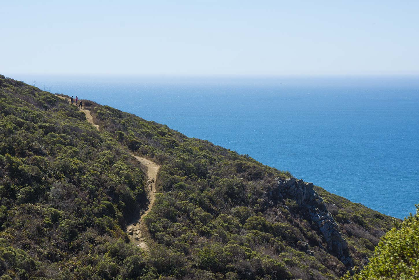 The Views Of Chaparral Covered Coastal Bluffs Are Replaced With Strikingly Diffe Wooded Green Hills And Wide Beach Town Muir