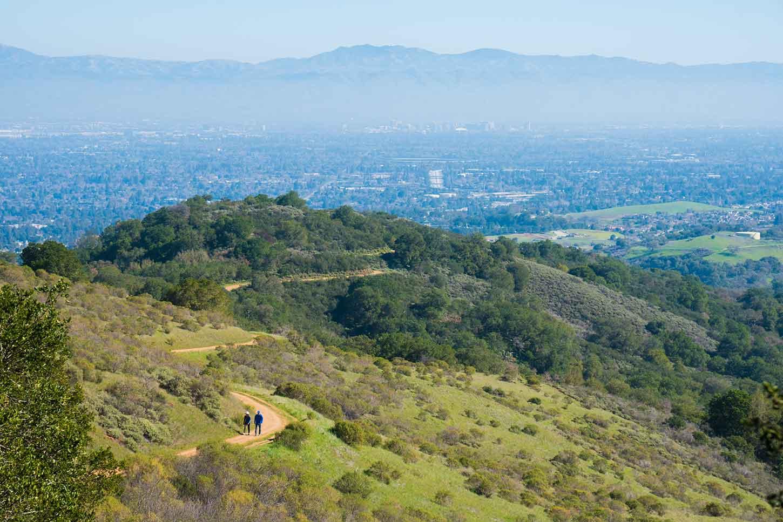 The Stephen E. Abbors Trail